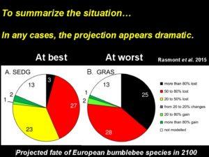 Projection du sort des bourdons européens en 2100